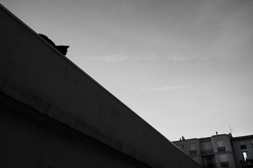 [LPDJ] 18/08/2014 Hvq5